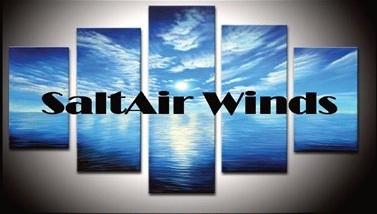 SaltAir logo